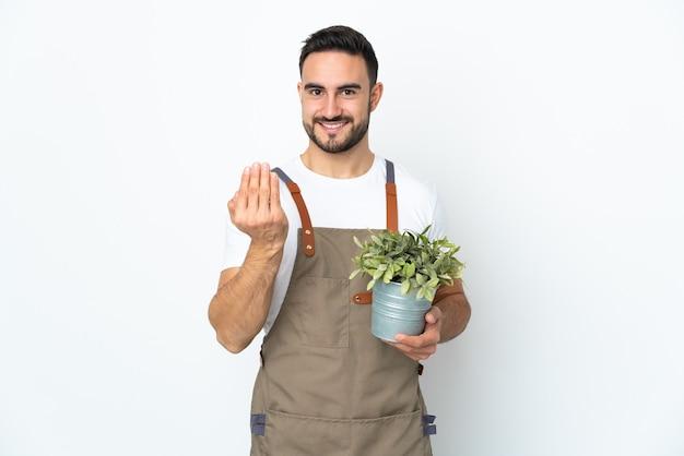 Homme de jardinier tenant une plante isolée sur un mur blanc invitant à venir avec la main. heureux que tu sois venu