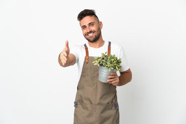Homme jardinier tenant une plante sur un mur blanc isolé se serrant la main pour conclure une bonne affaire