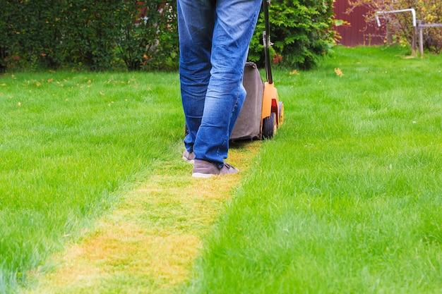 Un homme en jeans tond l'herbe avec une tondeuse à gazon, ce qui laisse derrière lui une bande tondue. vue arrière