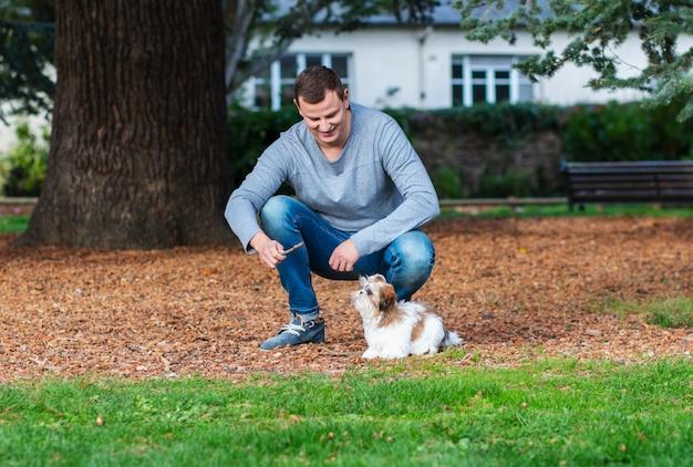 Homme jouant avec shih tzu puppy outdoors, dressage de chiens dans le parc