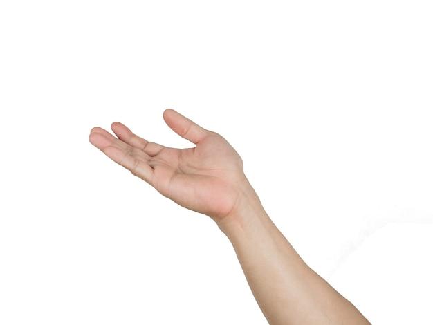 Homme, main droite, blanc, isolé, fond blanc