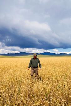 Homme marchant dans le champ de maïs dans une belle vue panoramique.