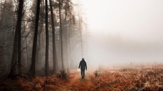 Homme marchant dans un fond d'écran de téléphone portable dans les bois brumeux
