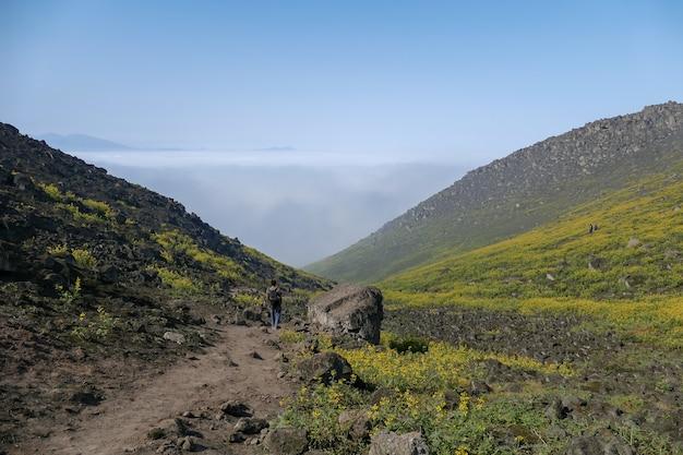 Homme marchant dans le paysage fleuri d'une vallée montagneuse