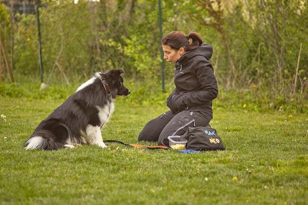 L'homme marche avec le chien au parc
