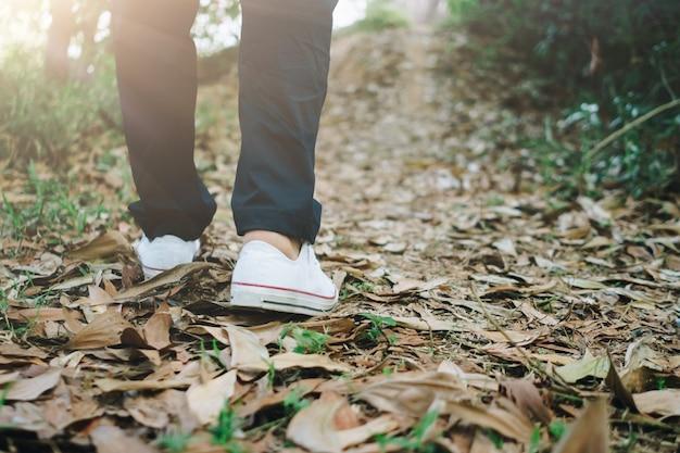 L'homme marche dans la nature du bois ou de la jungle avec la lumière du soleil. mode de vie et exercice lents.