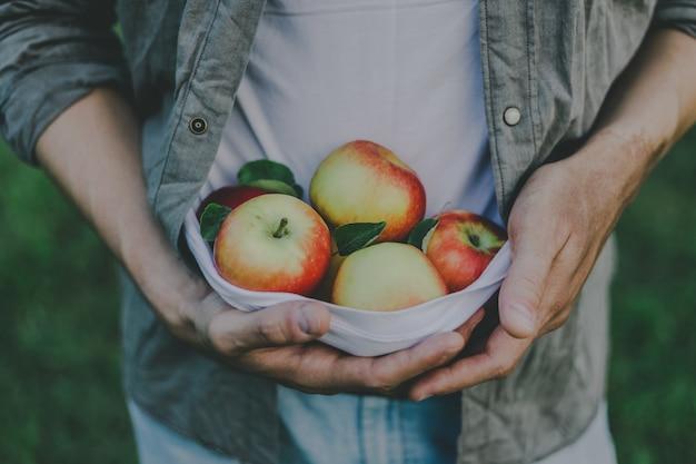 Homme montrant la récolte des pommes fraîches du jardin