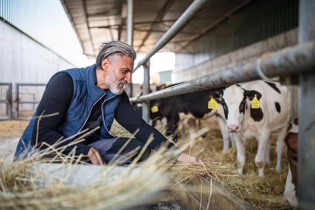 Un homme mûr travaillant à la ferme de journal, industrie agricole.