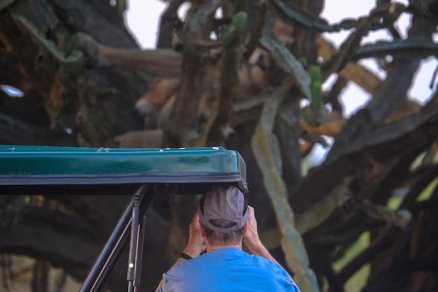 Homme parlant photo d'arbre et de cactus