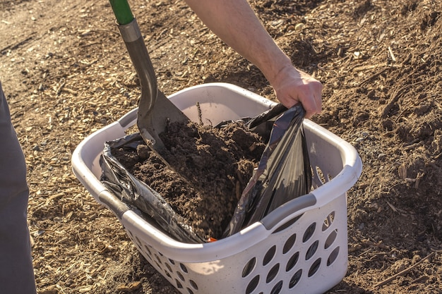 Homme avec pelle chargeant le sol dans un conteneur ouvrier agriculteur homme creusant le sol photo de haute qualité