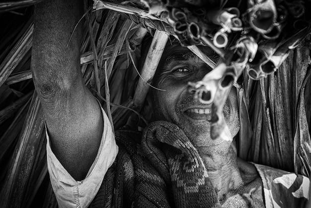 Homme portant des tas de cannes à sucre coupées sur l'épaule avec fond de culture debout