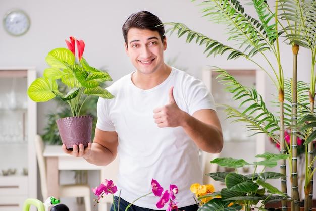 Homme prenant soin des plantes à la maison