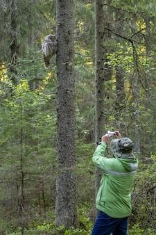 Homme, prendre photo, de, hibou, séance, dans, arbre