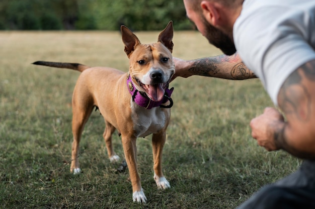 Homme profitant d'un moment de qualité avec son chien