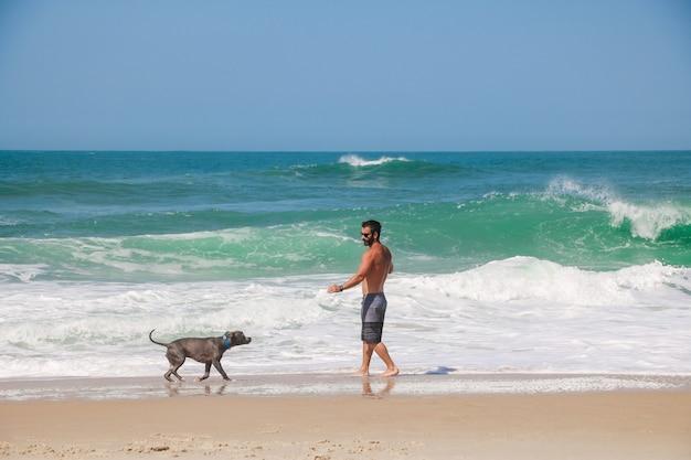 Homme qui court et joue sur la plage avec son chien pit-bull. journée ensoleillée, avec ciel bleu et mer cristalline.