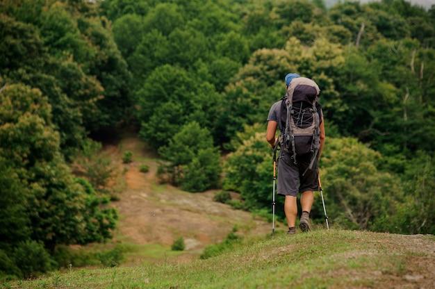 Homme qui marche avec sac à dos de randonnée et bâtons dans la forêt verte