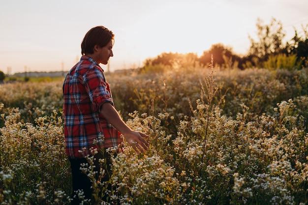 L'homme regarde en arrière touchant sa main des fleurs sauvages dans le champ sur le coucher du soleil.