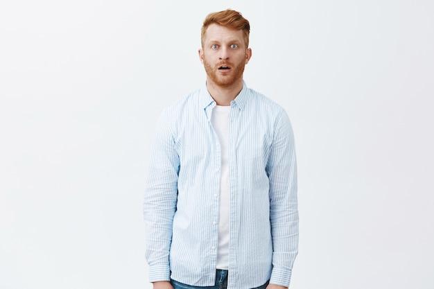 Homme rousse debout comme un zombie dans stupéfait, regardant étonné, la mâchoire tombante, choqué et étonné jusqu'au fond du cœur, posant sur un mur gris en chemise bleue décontractée