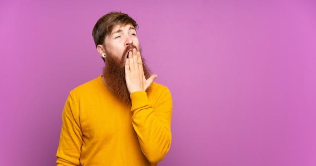 Homme rousse à longue barbe sur bâillement violet isolé et couvrant la bouche grande ouverte avec la main