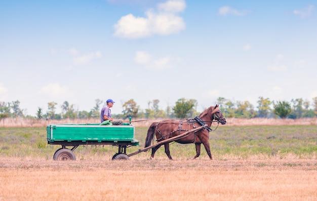 L'homme russe monte un chariot. type de transport.