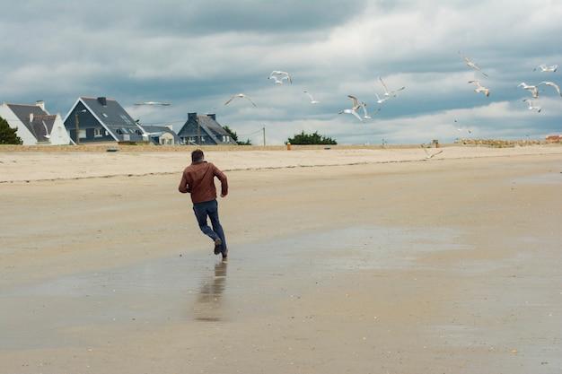 L'homme s'enfuit et groupe d'oiseaux mouette près
