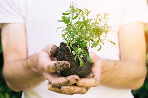 Homme sans visage avec tas de terre et de plantes