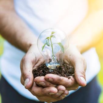 Homme sans visage tenant une ampoule avec des plantes