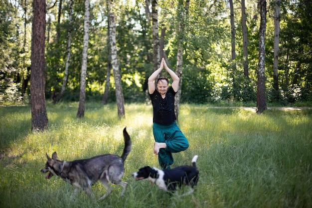 L'homme se tient dans un asana pratiquant le yoga dans le parc sur l'herbe verte avec ses chiens