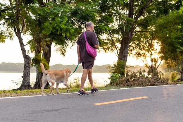 Homme senior actif à pied avec chien golden retriever sur la route dans un parc.