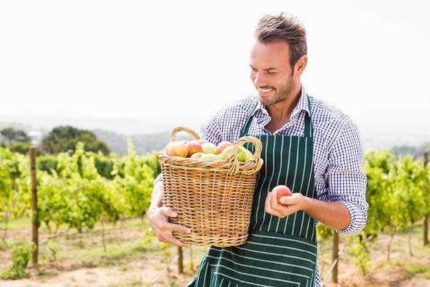 Homme souriant avec panier de pommes au vignoble