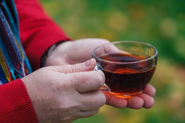 Homme, à, tasse thé, promenade, dans, automne, parc, à, feuilles érable