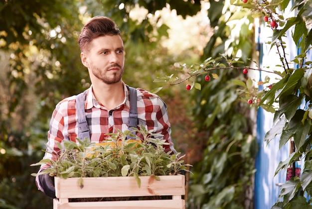 Homme tenant une caisse en bois avec des semis