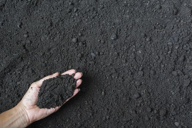 Homme tenant le sol dans les mains pour le concept de plantation.