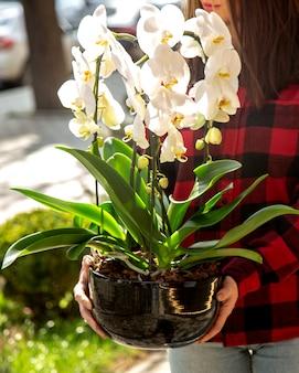 Homme, tenue, blanc, orchidée, vue côté