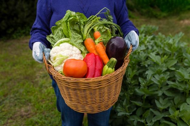 Homme, tenue, panier, légumes