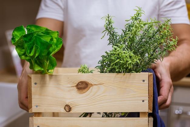 Un homme tient une boîte en bois avec de la verdure