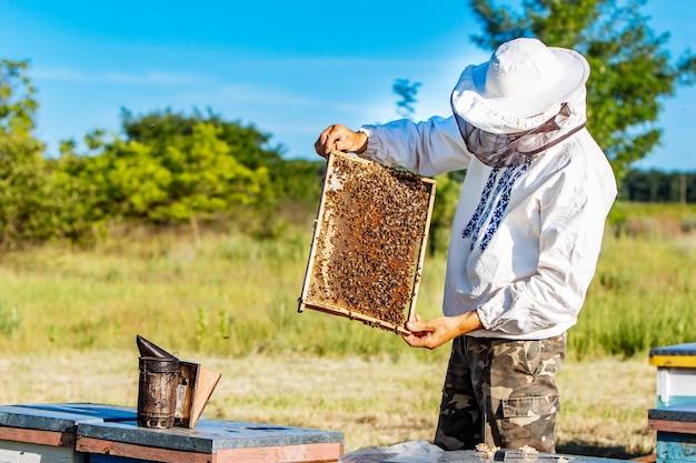Homme travaillant dans le rucher.