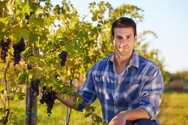 Homme travaillant dans un vignoble