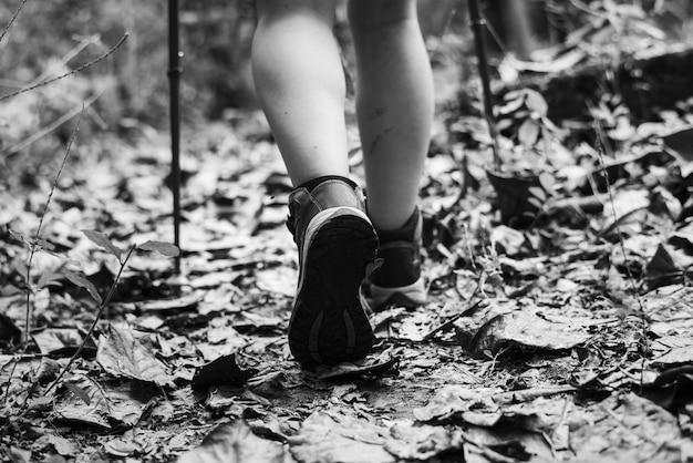 Homme trekking dans une forêt