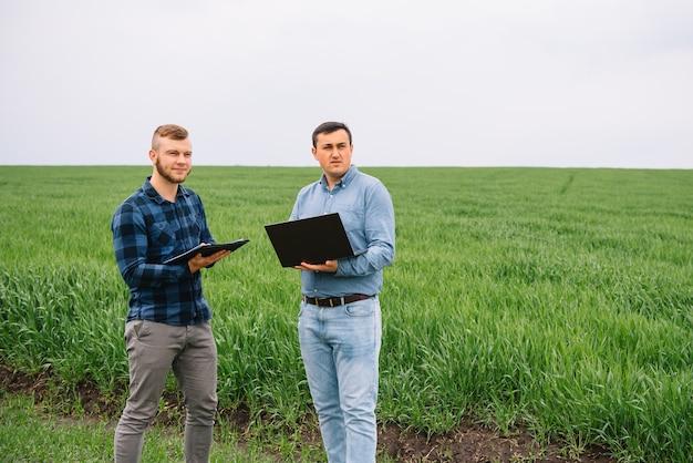 Hommes d & # 39; affaires debout dans un champ de blé et à la recherche sur un ordinateur portable