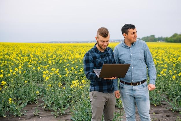 Hommes d & # 39; affaires debout dans le champ de colza avec ordinateur portable