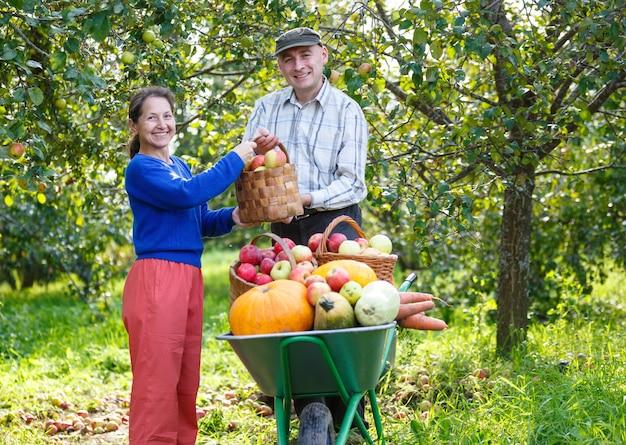 Hommes et femmes adultes heureux avec une grande récolte dans le jardin extérieur