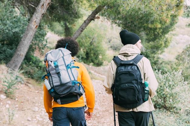 Hommes, trekking, dans, nature