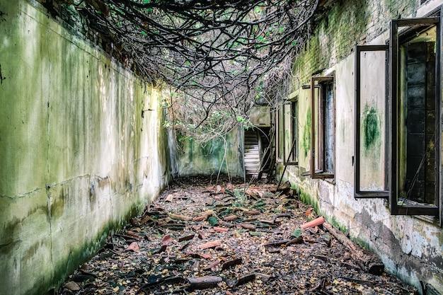 Hôpital abandonné à poveglia