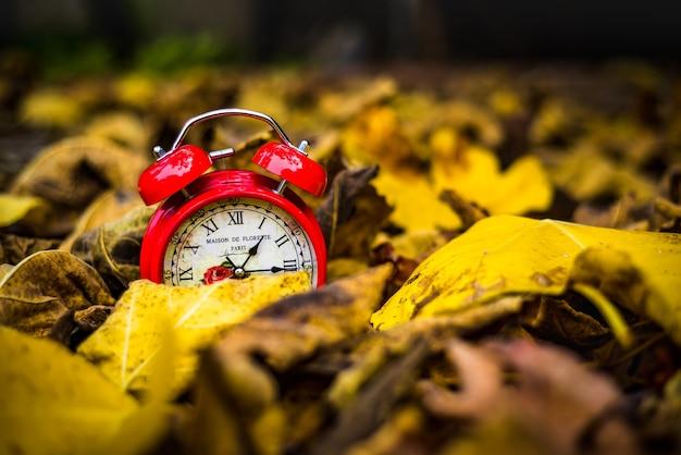 Horloge vintage rouge en feuilles d'automne jaunes