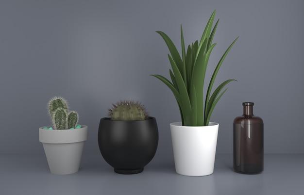 Horticulture de cactus