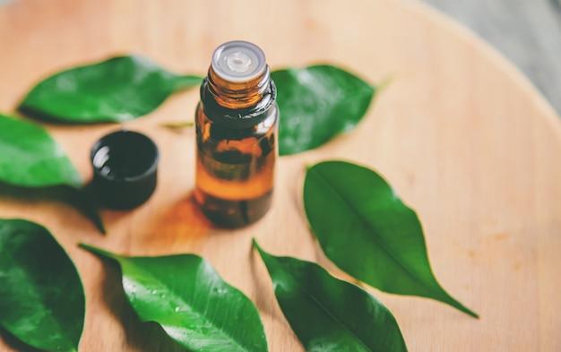 Huile essentielle d'arbre à thé dans une petite bouteille. mise au point sélective.