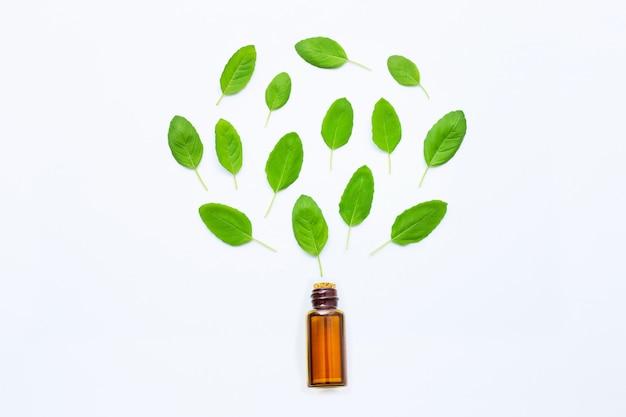 Huile essentielle de basilic sacré dans une bouteille en verre avec des feuilles fraîches de basilic sacré