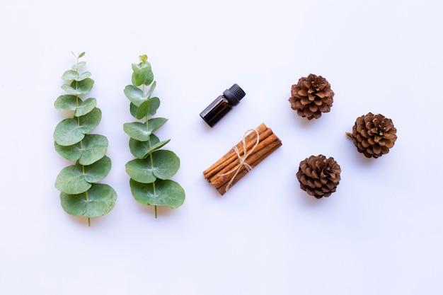 Huile essentielle avec des branches d'eucalyptus, des ciseaux vintage, du bâton de cannelle et des pommes de pin sur blanc