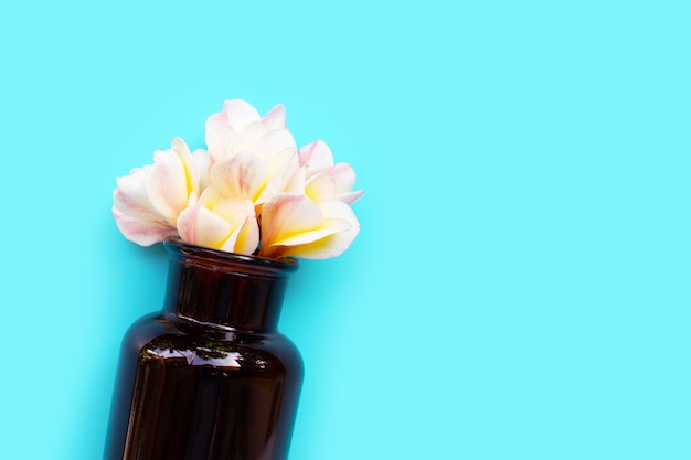 Huile essentielle à la fleur de frangipanier sur fond bleu